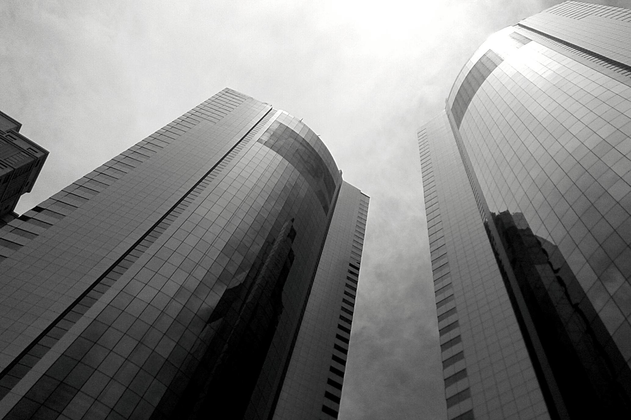 Rascacielos. Fachadas exteriores.